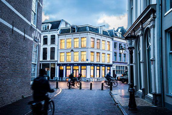 De Pausdam in Utrecht van De Utrechtse Internet Courant (DUIC)