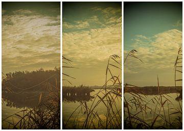lauwersmeer triptychon 3 von anne droogsma