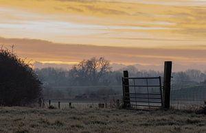 prairie dans le froid sur Tania Perneel