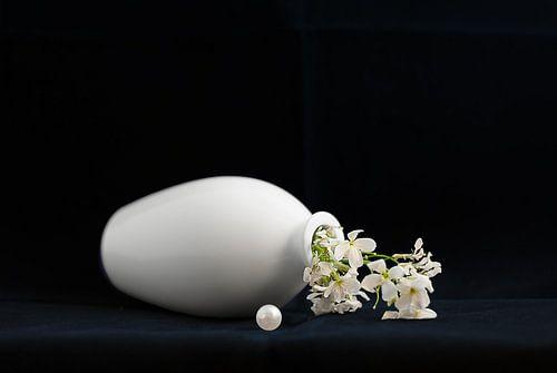 Stilleven met parel en witte bloem van