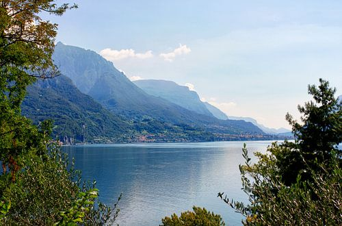 Lake Como van