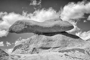 Stein im Gleichgewicht von Loek van de Loo