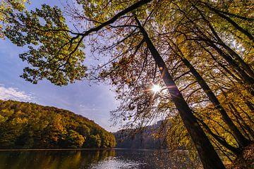 stuwmeer in herfst sfeer van