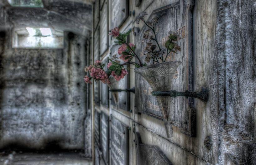 Verlaten grafkelder van Eus Driessen
