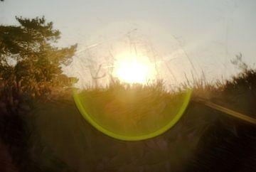 De ondergaande zon van Jurjen Jan Snikkenburg