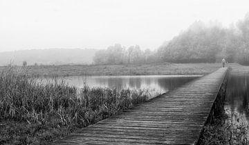Walking across the Brigde van Edwin Trouwborst