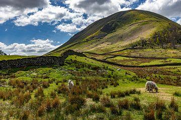 Lake District, Great Britain van Bernhard Nijenhuis