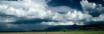 Tanzania Losimingori von Ronald de Boer