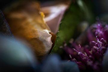 Detail van een boeket met rozen en bloeiende uien van Jenco van Zalk