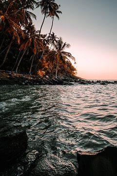 Sonnenuntergang unter Palmen von Daniel Damnitz