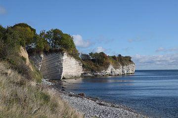 Stevns Klint, Kreidefelsen im Südosten der dänischen Insel Seeland in der Ostsee, eine Touristenattr von Maren Winter