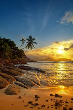 paradijs Seychellen van Silvio Schoisswohl