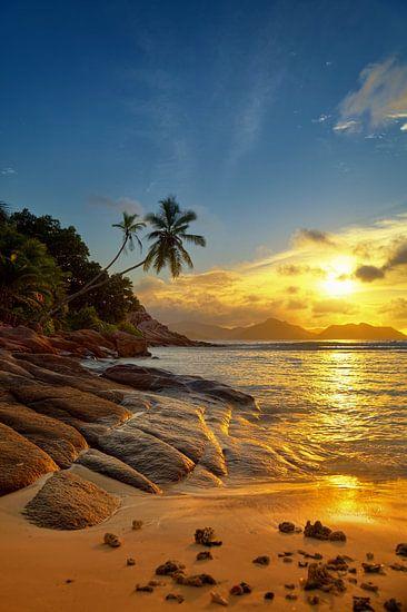 paradijs Seychellen