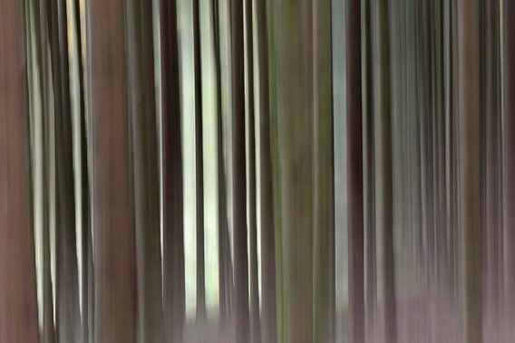 Tremotion, rust van Mirjam van Vooren