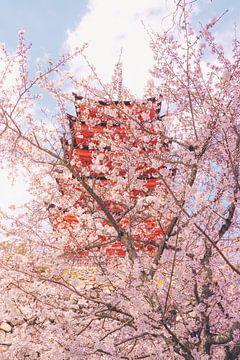 Zarte Blüten in der Nähe einer Pagode. von Mickéle Godderis