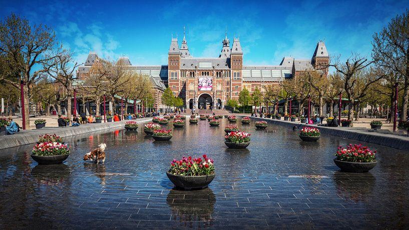 Tulpen aan voor het Rijksmuseum in Amsterdam Museumplein van Bart Ros