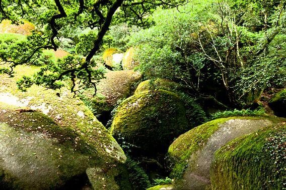 Greenrock van Pieter de Kramer