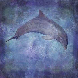 Delfin Textur von Artstudio1622