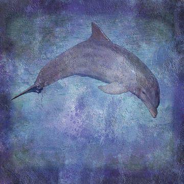 Delfin Textur von Sigrid Klop