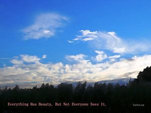Confucius: Everything Has Beauty, But...