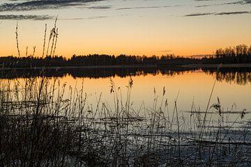 Middernachtzon boven de poolcirkel in Zweden. van