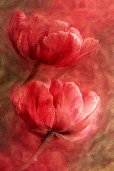 Rote Tulpen abstrakt