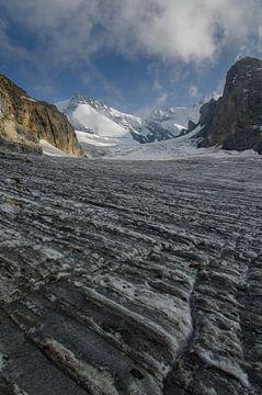 De gletsjer van de Bluemlisalp in volle glorie. van Sean Vos