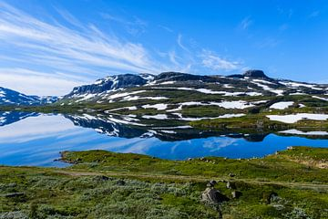 Hardangervidda sur Joke Beers-Blom