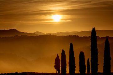 Goldene morgenstunde in Val d'Orcia von Filip Staes