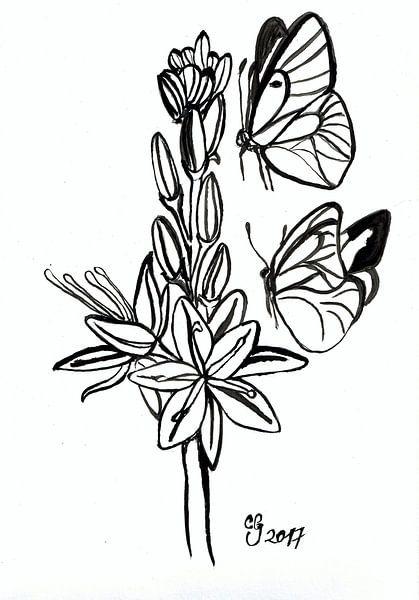 Seelen in Asphodel-Feldern von Celeste Groenewald