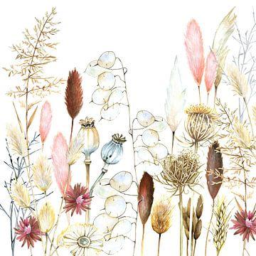 Getrocknete Blumen und Pampas-Gräser von Geertje Burgers