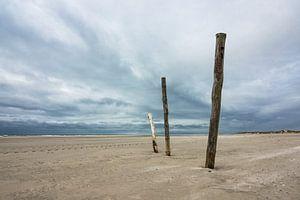 Poles on the North Sea coast on the island Amrum