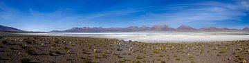 panorama van een zoutvlakte in Chili van Eline Oostingh
