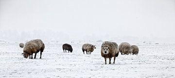 Winter in Holland5 van Henk Leijen