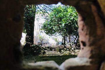 Binnenplaats Vervallen Cathedraal van Steven van Dijk