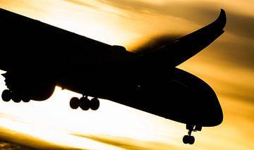 Dreamliner van de KLM tegen de zon in van Stefano Scoop