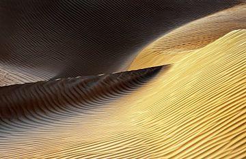 Vormen van de Wind II, Izidor Gasperlin van 1x