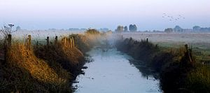 Mistige ochtend in Brabant van Wim Schuurmans