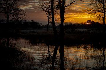 Beginn eines neuen Tages, die Sonne kommt heraus. Sind Sie dabei? von Studio de Waay