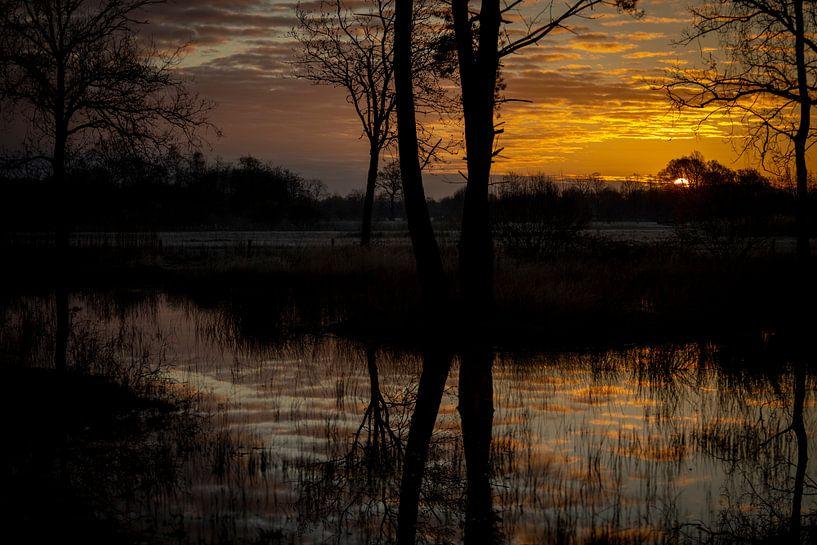 start van een nieuwe dag, de zon komt te voorschijn. Doe jij mee? van Studio de Waay