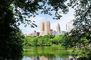 Central Park // New York, USA