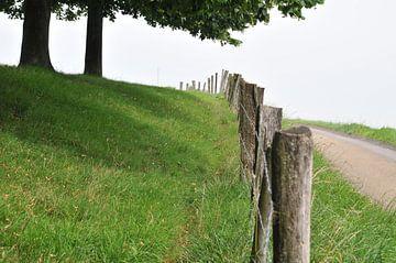 Limburgs landschap van Edwin Sonneveld