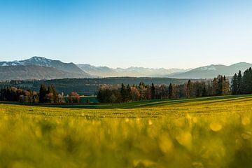 Uitzicht op Illertal en de Allgäuer Alpen van Leo Schindzielorz
