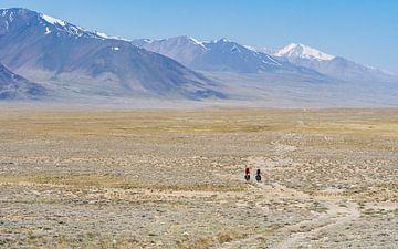 Fietsers op de Pamir highway van