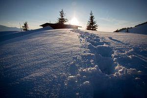 Spuren im Schnee van