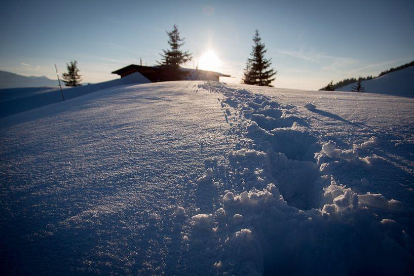 Spuren im Schnee van Harry Stahl