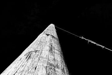 Der hohe Pol des Palendorp in Schwarz-Weiß von Wim Stolwerk