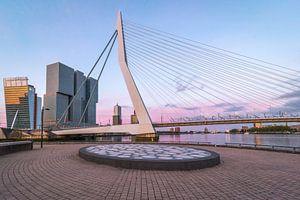 Zonsopkomst Erasmusbrug Rotterdam van
