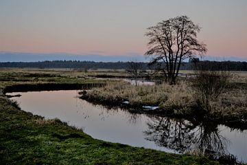 Drentse Aa, Niederlande, Drenthe von Bernard van Zwol