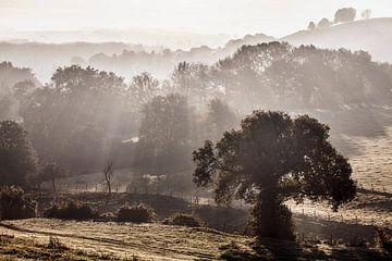 Sonnenaufgang in Gulpen von Rob Boon